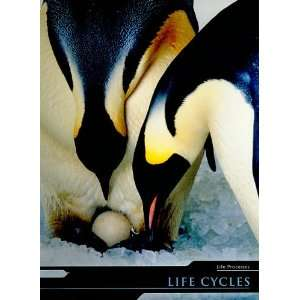 : Life Cycles (Life Processes) (9781403488541): Holly Wallace: Books