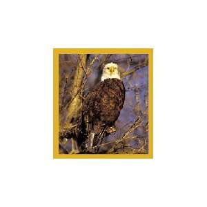 New Magnetic Bookmark Bald Eagle High Quality Modern