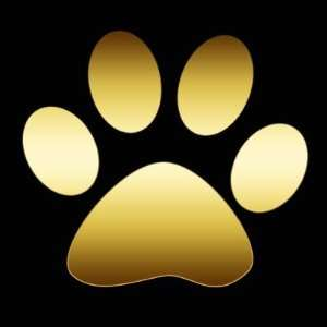Gold Paw Print Round Stickers Arts, Crafts & Sewing
