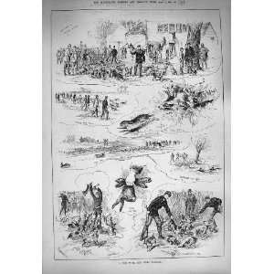 1884 Eton Beagles Hunting Rabbits Huntsman Sport:  Home
