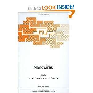 Nanowires (NATO Science Series E (9780792346272) P.A