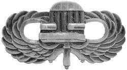 CHAIR BORNE Paratrooper Jump Wing P849 CHAIRBORNE