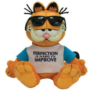 GARFIELD TY BEANIE BABY PERFECTION SUNGLASSES POOKY
