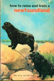 GREAT Dog Book 1973 Newfoundland Dogs Many Photos