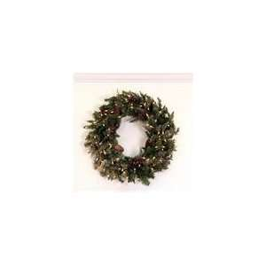 30 Pre Lit Frosted Edina Fir Artificial Christmas Wreath