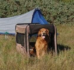 PRECISION SOFT SIDE SIDE MEDIUM PET CRATE CARRIER DOG