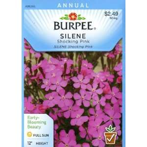 Burpee 39576 Silene Shocking Pink Seed Packet Patio, Lawn