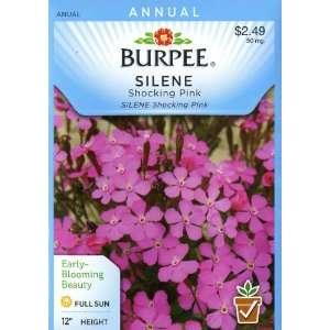 Burpee 39576 Silene Shocking Pink Seed Packet Patio, Lawn