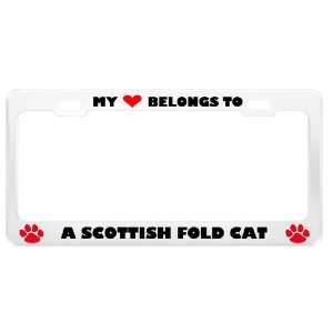 A Scottish Fold Cat Pet White Metal License Plate Frame