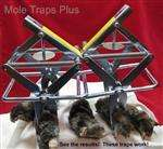 New Easy Mole Eliminator Traps Easy Set Design Lawn Care Pest Control