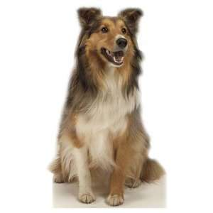 Animal Collie Dog Life Size Poster Standup cutout