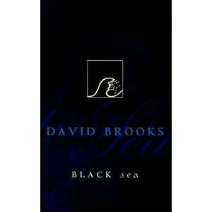 Black sea (Allen & Unwin fiction) (9781864485271) David Brooks Books