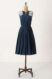 Anthropologie   Besotted Dress