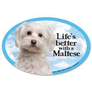 Maltese Oval Dog Magnet for Cars: Pet Supplies
