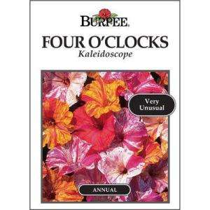 Burpee Four OClock Kaleidoscope Seed 33475