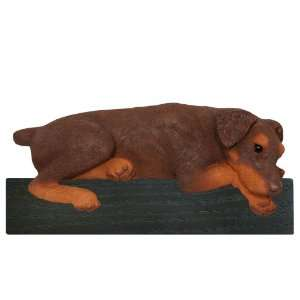 Red Natural Ears Doberman Dog Shelf and Wall Plaque