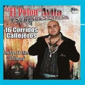 16 Corridos Callejeros El Pelon Avila y Su Banda
