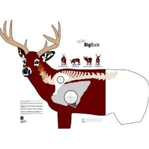 Critter Paper Targets   Big Buck, Deer, 28X28 Inch: Sports & Outdoors